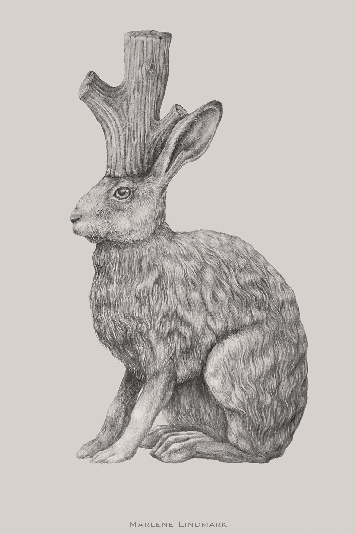 Hare with stump