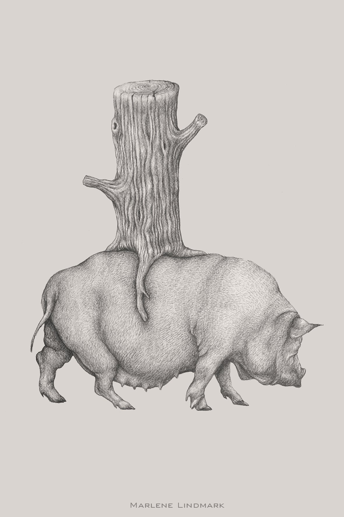 Pig with stump