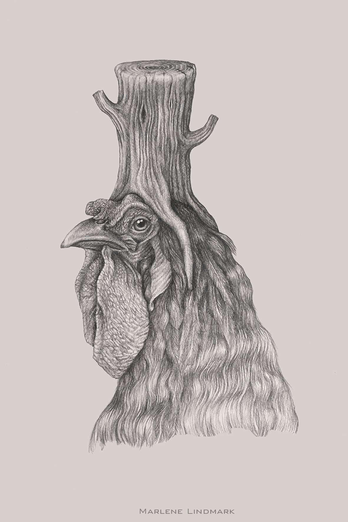 Rooster with stump