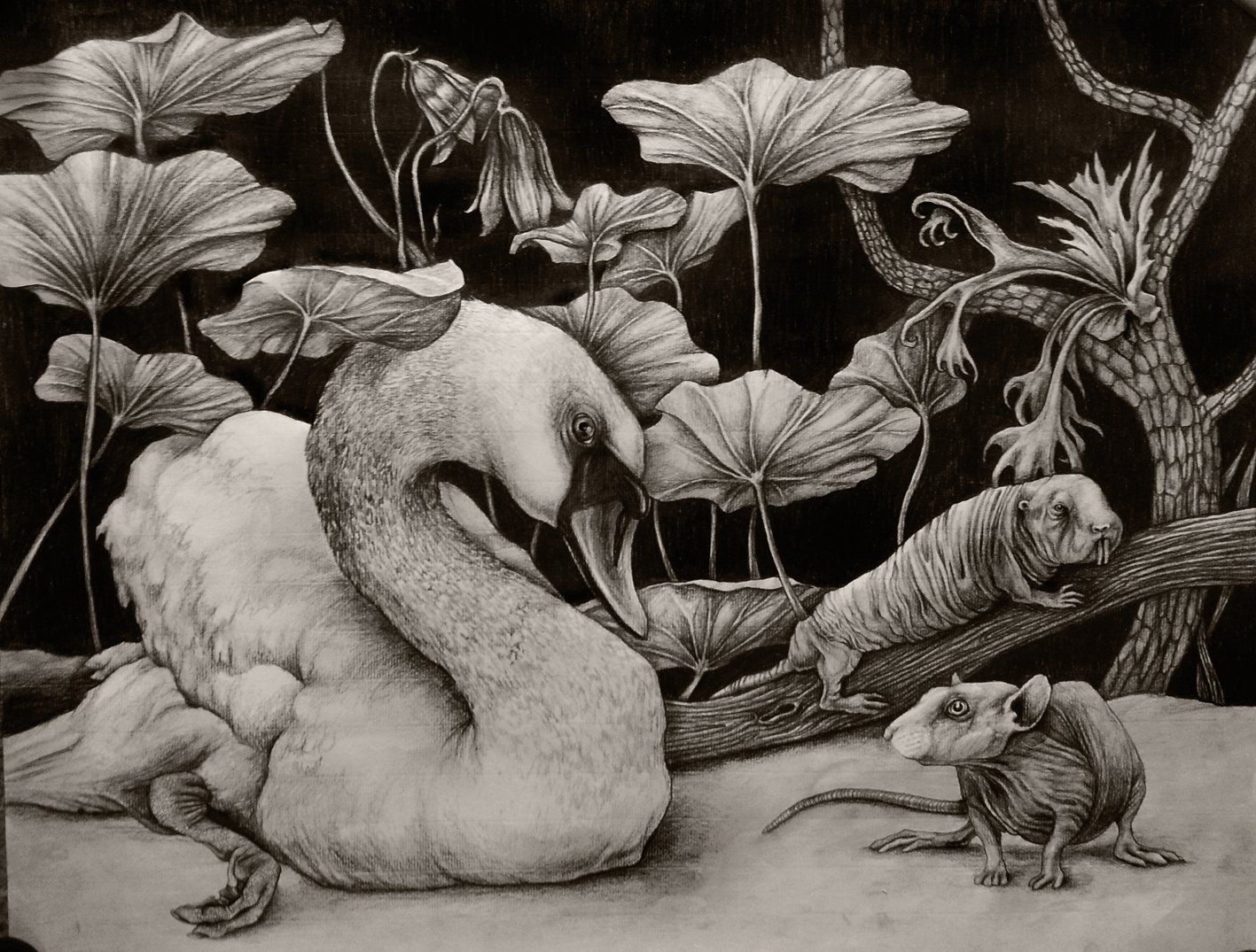 Swan and naked rats 70x50cm